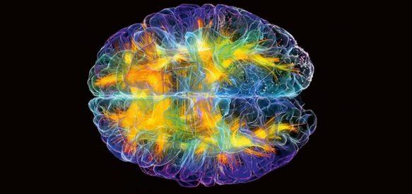 La Chiropratica aumenta del 20% la funzione cerebrale